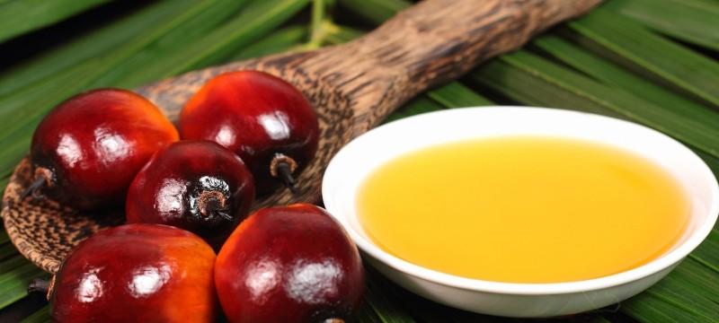 african-palm-oil.jpg